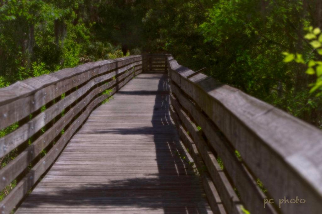 Daytime  on Lost Bridge1