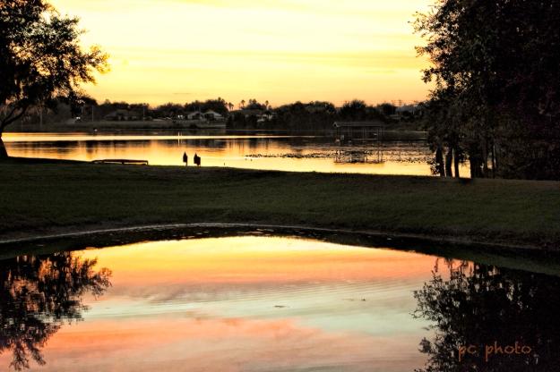 WIDE ANGLE Lake sunset mirror image #1  1
