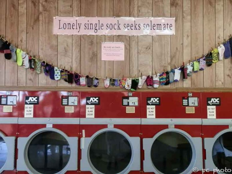 Lonely sock line-391