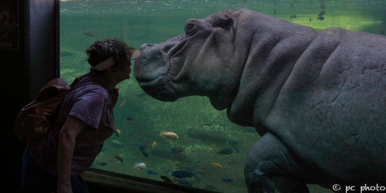Kay and her hippo friend-15