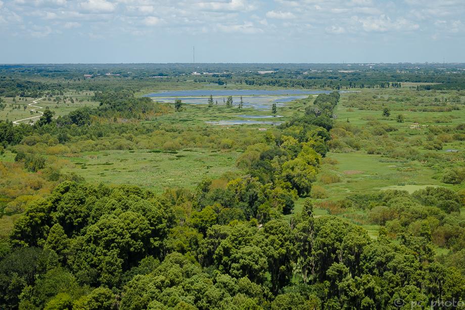 *1b treelined trails 1b-0370