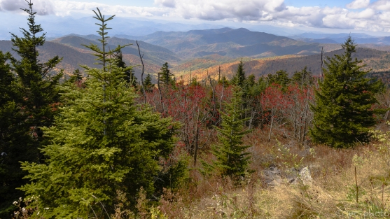 6-smokies-clingmans-dome-5583