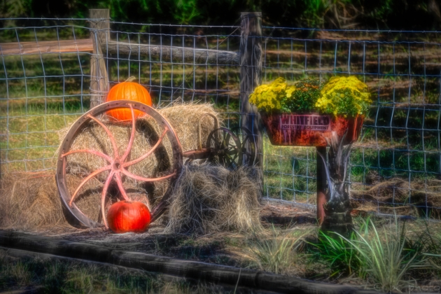 wagon wheel and pumpkin--Edit.jpeg Glow.jpg