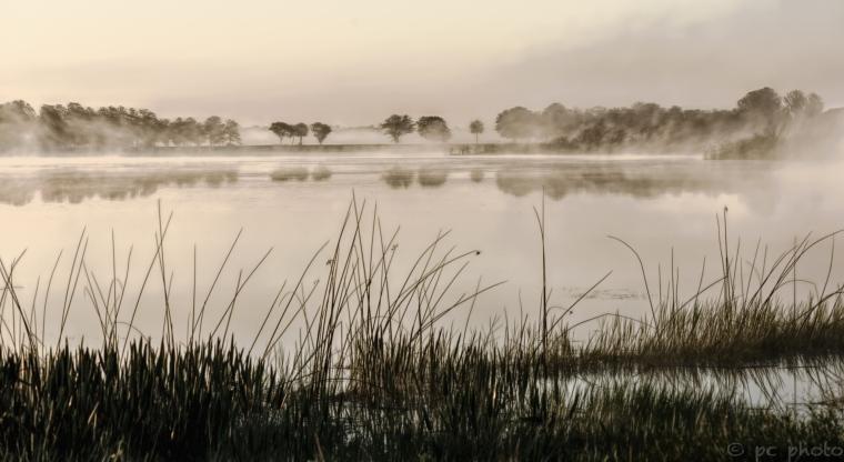 Dreamy mist